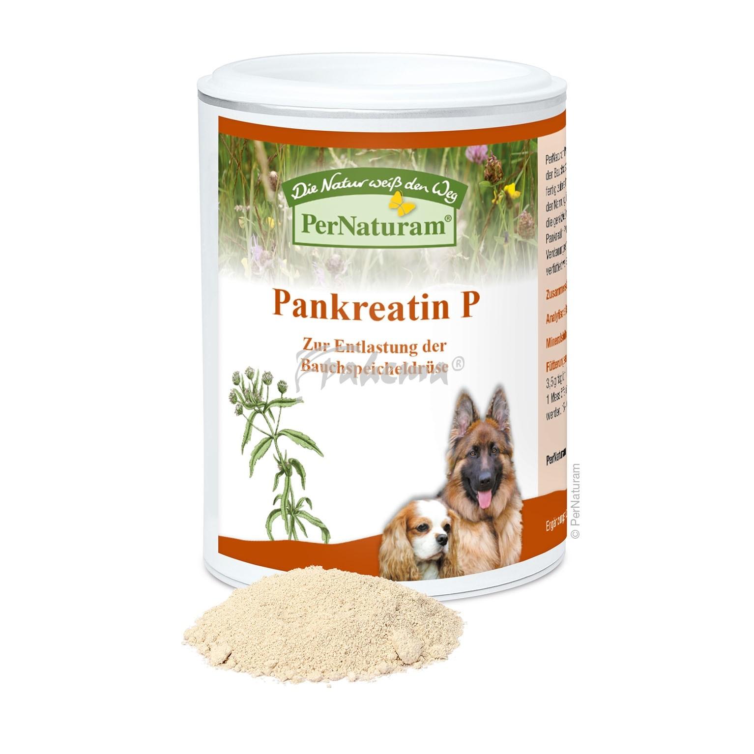 Produktbild: Pankreatin P