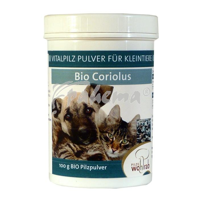 Produktbild: Coriolus Bio Pilzpulver