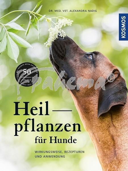 Produktbild: Heilpflanzen für Hunde
