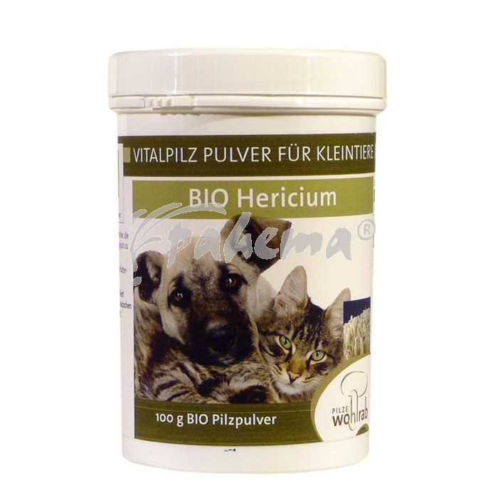 Produktbild: Hericium Bio Pilzpulver