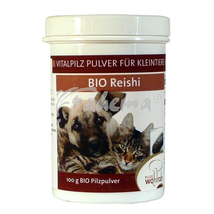 Produktbild: Reishi Bio Pilzpulver