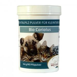 Coriolus Bio Pilzpulver