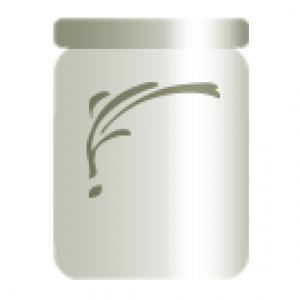 Reishi Bio Pilzpulver